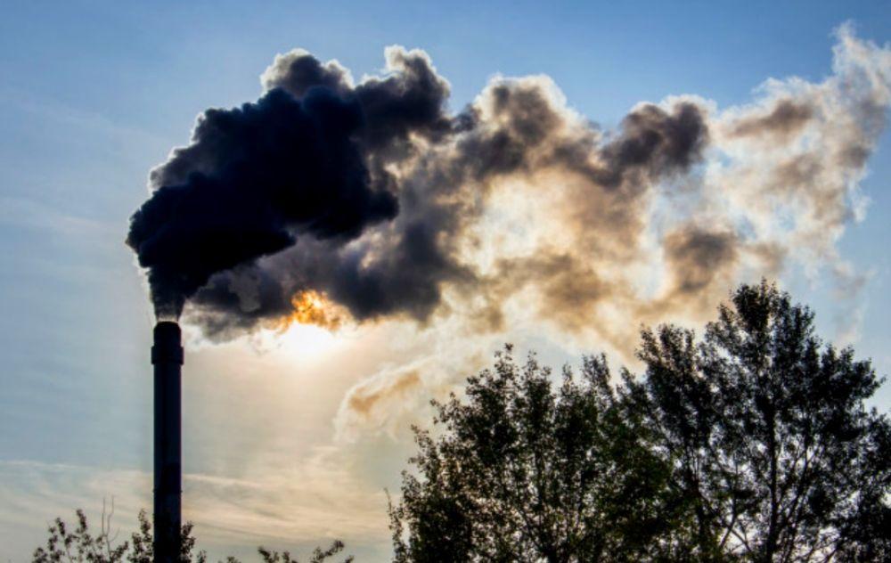 zakaz palenia węglem, smog