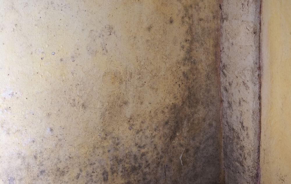 wilgoć w pomieszczeniach, jak pozbyć się wilgoci? klimatyzacja a wilgoć